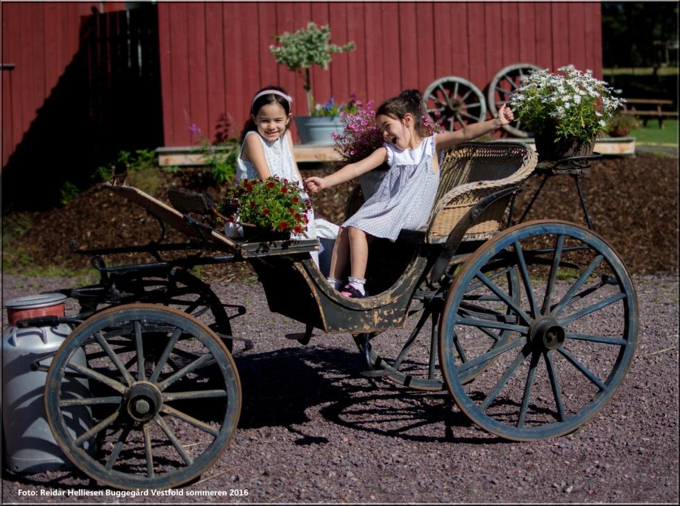 Barnene stor trivdes på bondeårdbesøk. Her fikk de klappe dyr, mate dyr og leke .